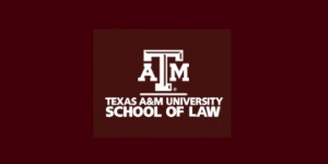 Digital Millennium Copyright Act at 20 @ Texas A&M Law | Fort Worth | Texas | United States